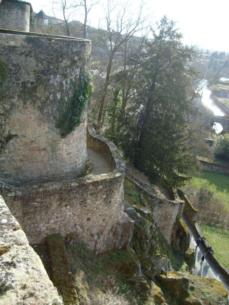 Ville, citadelle et château de Parthenay Dsc02324