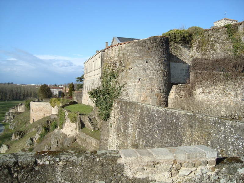 Ville, citadelle et château de Parthenay Dsc02325