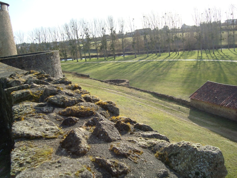 Ville, citadelle et château de Parthenay Dsc02417