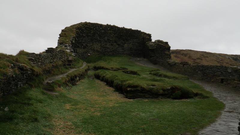 Château de Tintagel Imgp0113