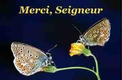 Marie, Reine de l'Univers Mercis11
