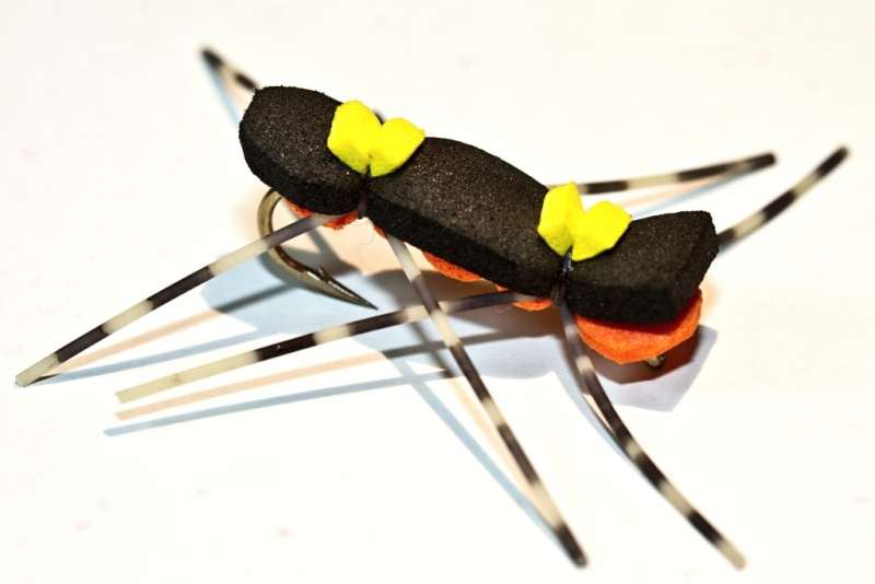 Chernobil Ant Cherno10