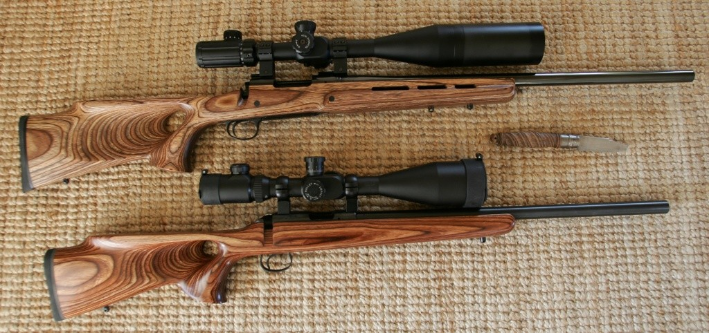 Votre avis sur le choix d'une carabine cal 308 Gt4g0010