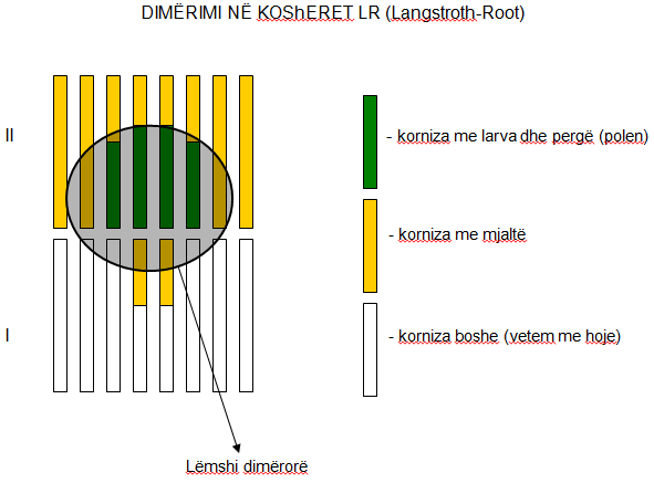 Dimërimi ne kosheret LR Untitl12
