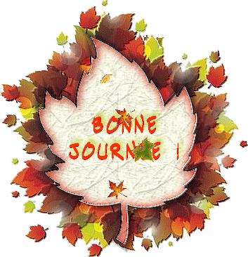 bonjour de novembre 98741612