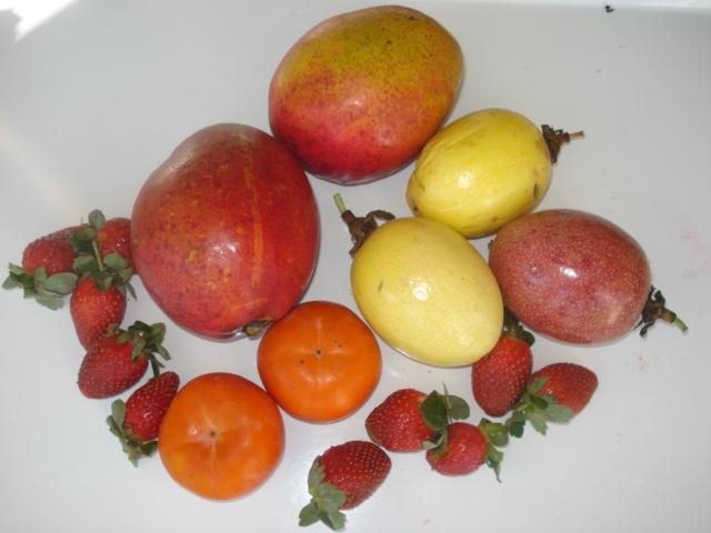 Passion fruit as people food. Jus_ha10