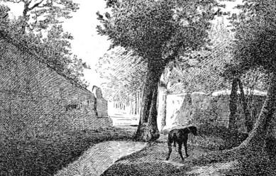 vie de Marco Polo d'Alvise Zorzi, - Page 3 Coin-d10