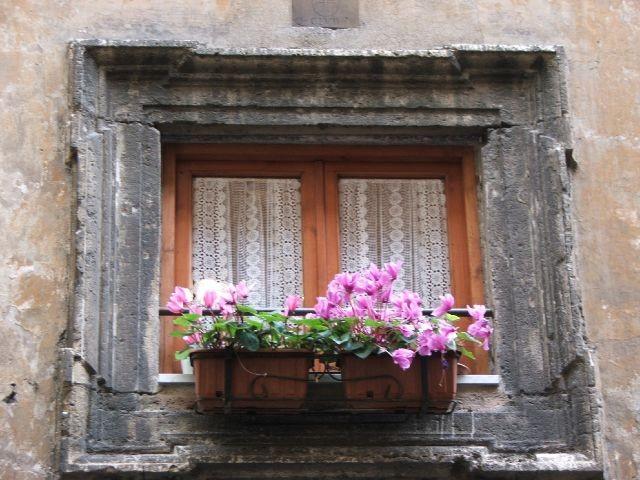 Des fenêtres d'hier et d'aujourd'hui. 20002510