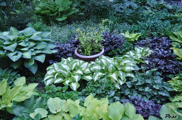 Bon Vendredi Garden17