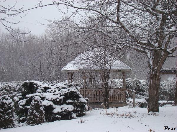 Bon Dimanche Snow_h10