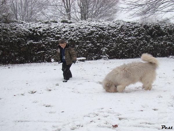 Bon Dimanche Snow_h13