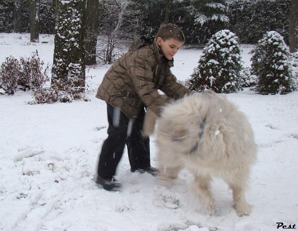 Bon Dimanche Snow_h14