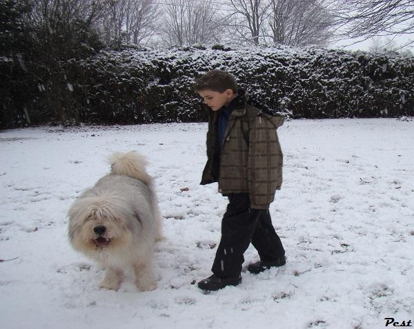Bon Dimanche Snow_h15