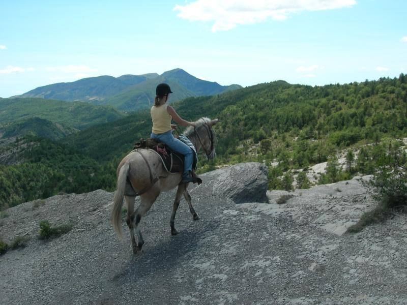 Photos de ma mule pour rêver suite Dscn4214