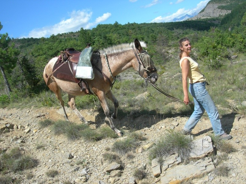 Photos de ma mule pour rêver suite Dscn4216