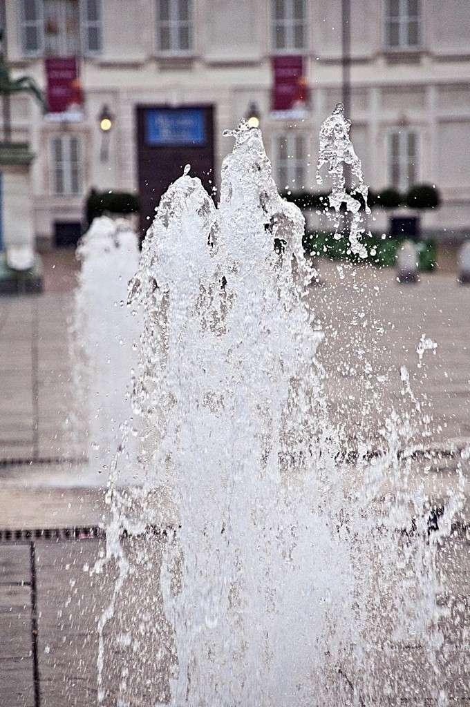 Torino al suo risveglio - Pagina 2 Dsc_1111