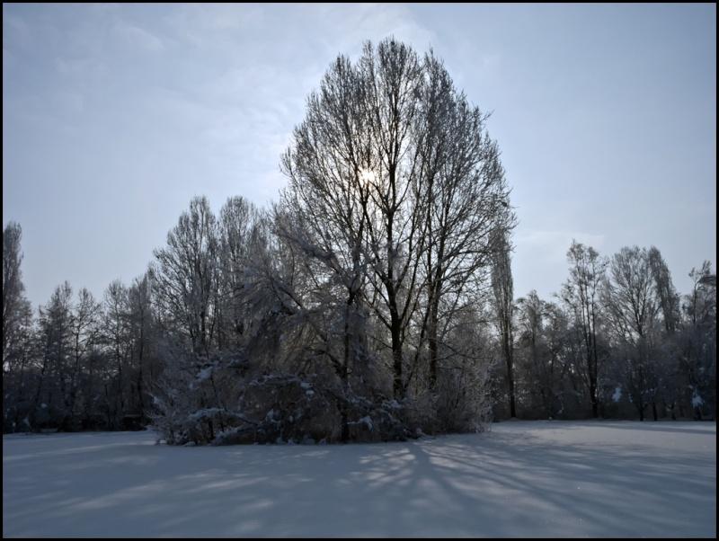 tempo da era glaciale  Dscn0113