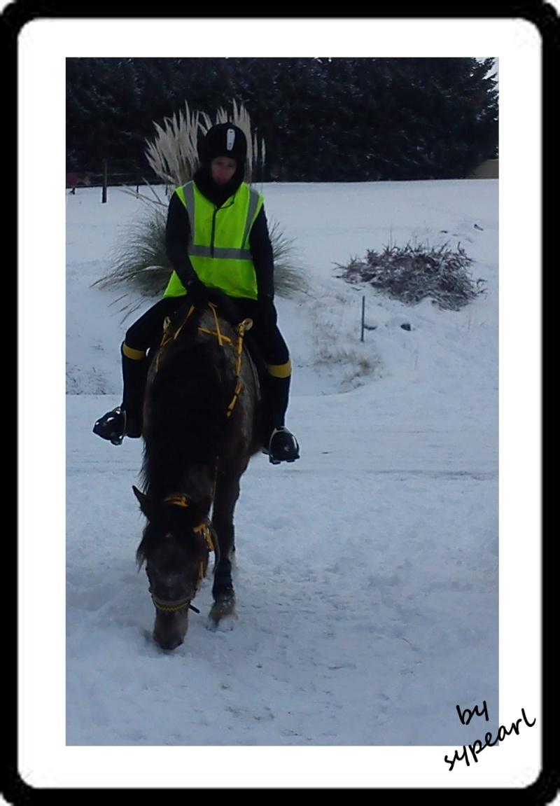 Nouveau concours photos ! La neige, vous, vos chevaux ! - Page 3 Balade10