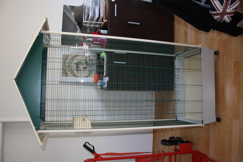 """Aménagement cage """"smarties"""" Img_3910"""