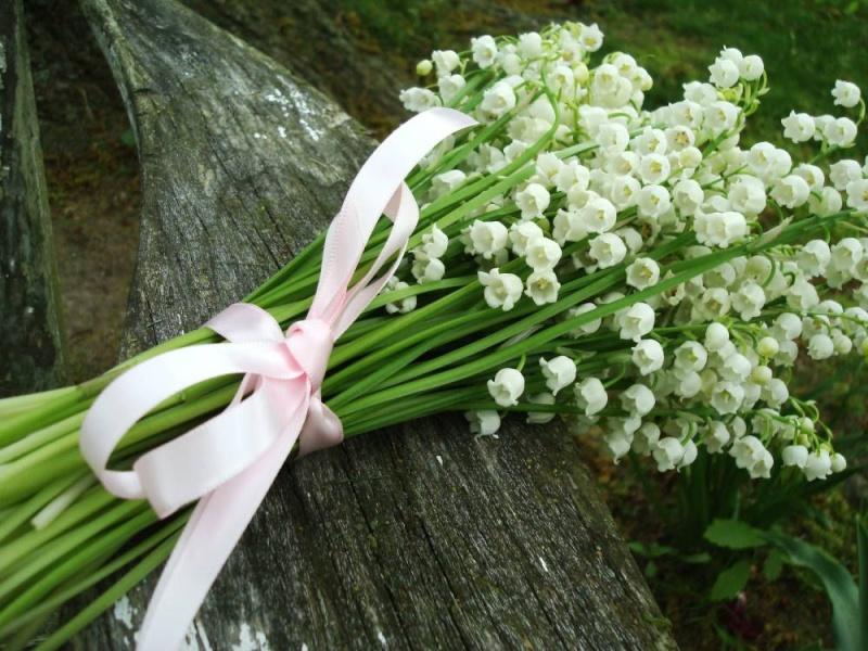 Bon 1er Mai Blog_l10