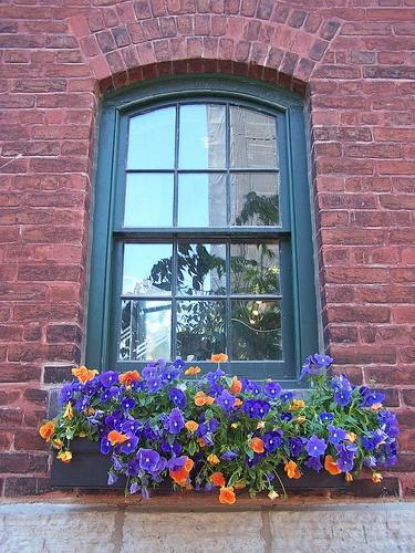 Des fenêtres d'hier et d'aujourd'hui. Fen_2_10
