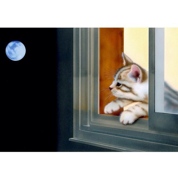 Bon Lundi Kitten10