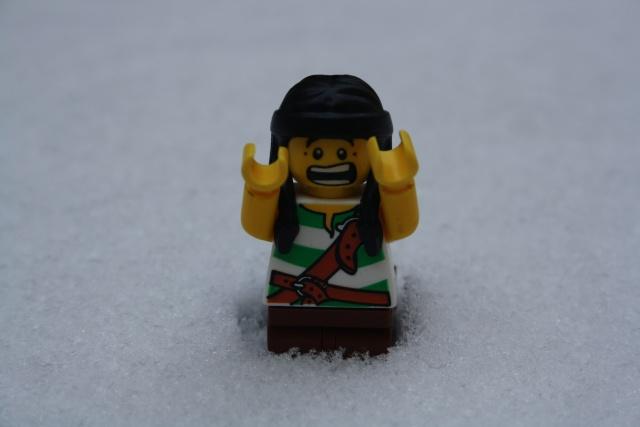 [L'hiver de la minifig] Les photos Img_5010