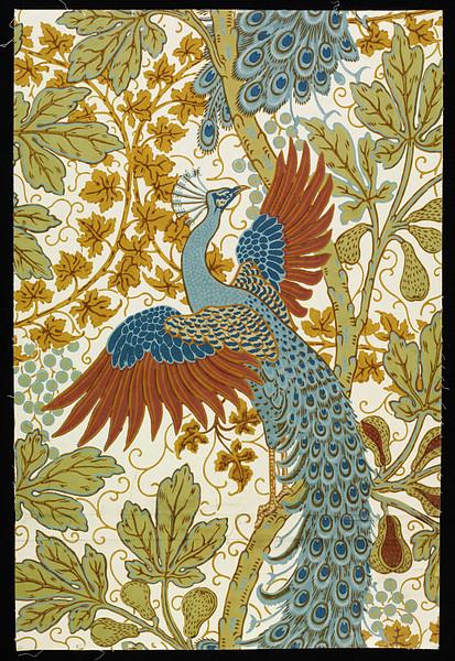 LE PAON: l'oiseau aux cent yeux  - Page 2 Crane_11