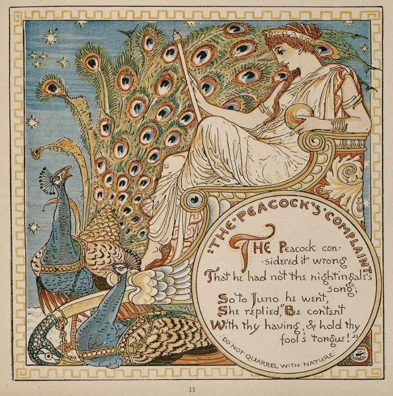 LE PAON: l'oiseau aux cent yeux  - Page 2 Crane_13