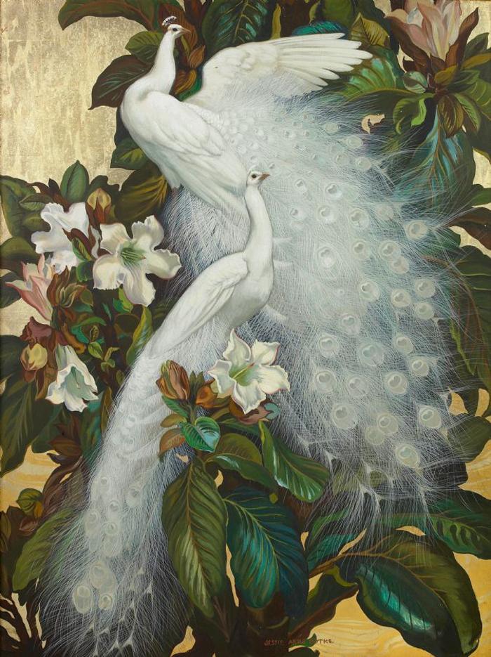 LE PAON: l'oiseau aux cent yeux  - Page 6 Jessie11