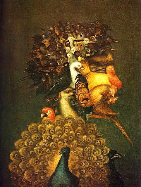 LE PAON: l'oiseau aux cent yeux  Paon_a18