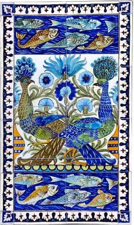 LE PAON: l'oiseau aux cent yeux  - Page 2 Paon_w11
