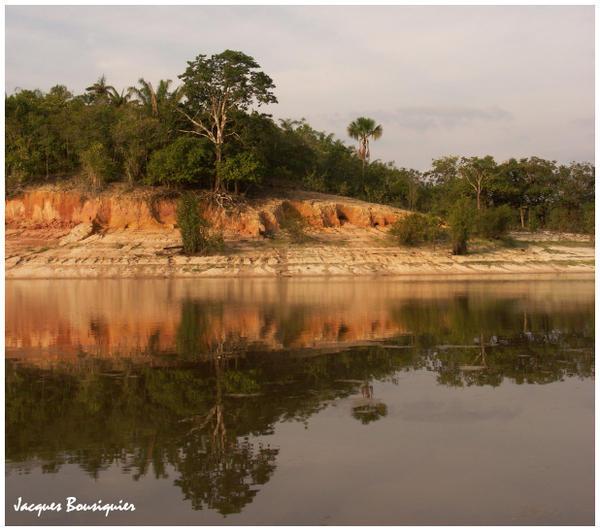 Images Grande Jungle Amazon11