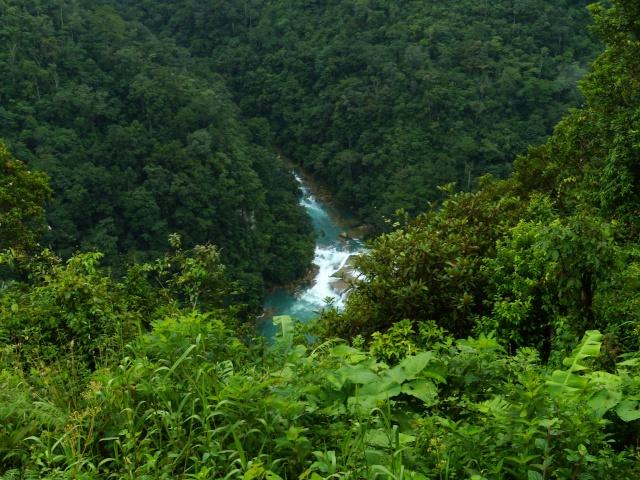Images Grande Jungle Dscn8410