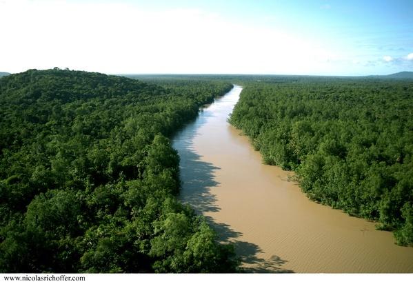 Images Grande Jungle Guyane10