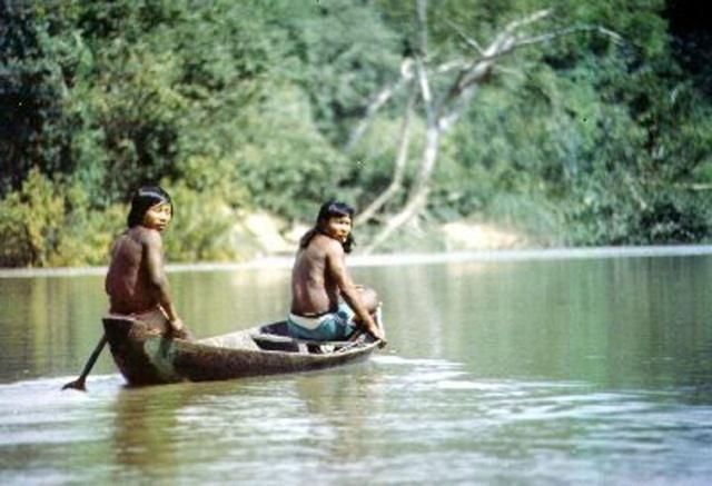 Images Grande Jungle Indien10
