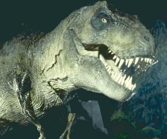 Images Grande Jungle T-rex10