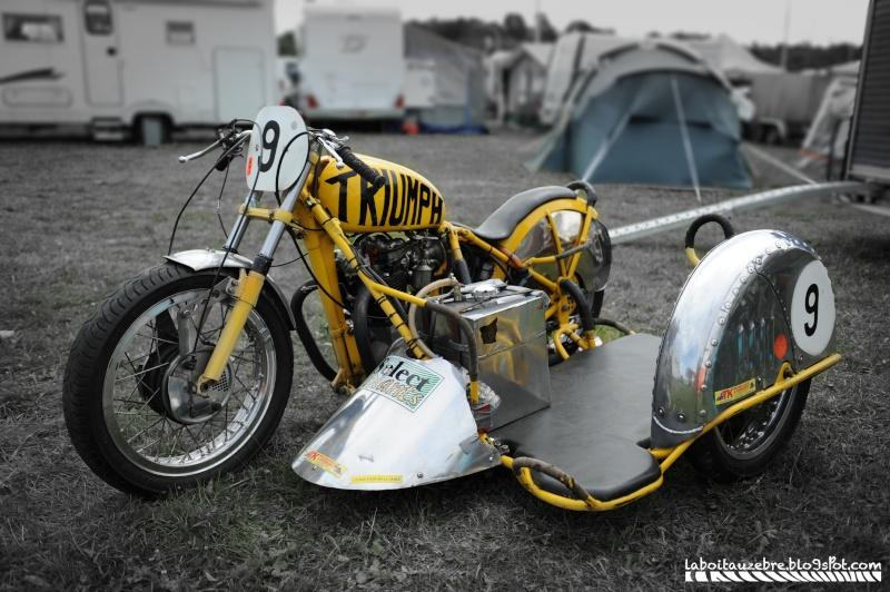 Le tigre jaune Side_t10