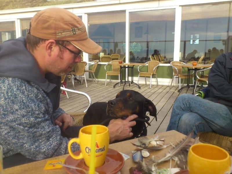 Nouvelles des chiens partis le 18 septembre  Dsc_2210