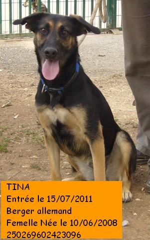 TINA Berger Allemand 250269602423096 P1090314