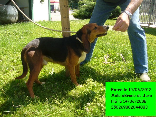 EDDY xBruno du Jura 250269802044083 P1130013