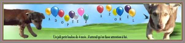 L'Assemblée Générale de notre association se tiendra le 23 octobre 2010 à 9 heure , à Noisy-le-Grand, 3 allée du Glacis - 93160 - Page 2 Bannia60