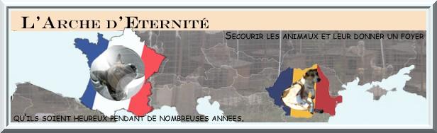 BANNIERE ARCHE FRANCE ROUMANIE Bannia80