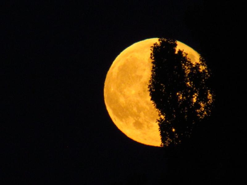 Une nuit particulière.... Rhone_14