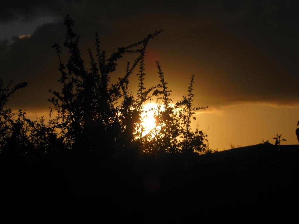 Couchers/levés du soleil et de la lune - Page 2 Photo_60