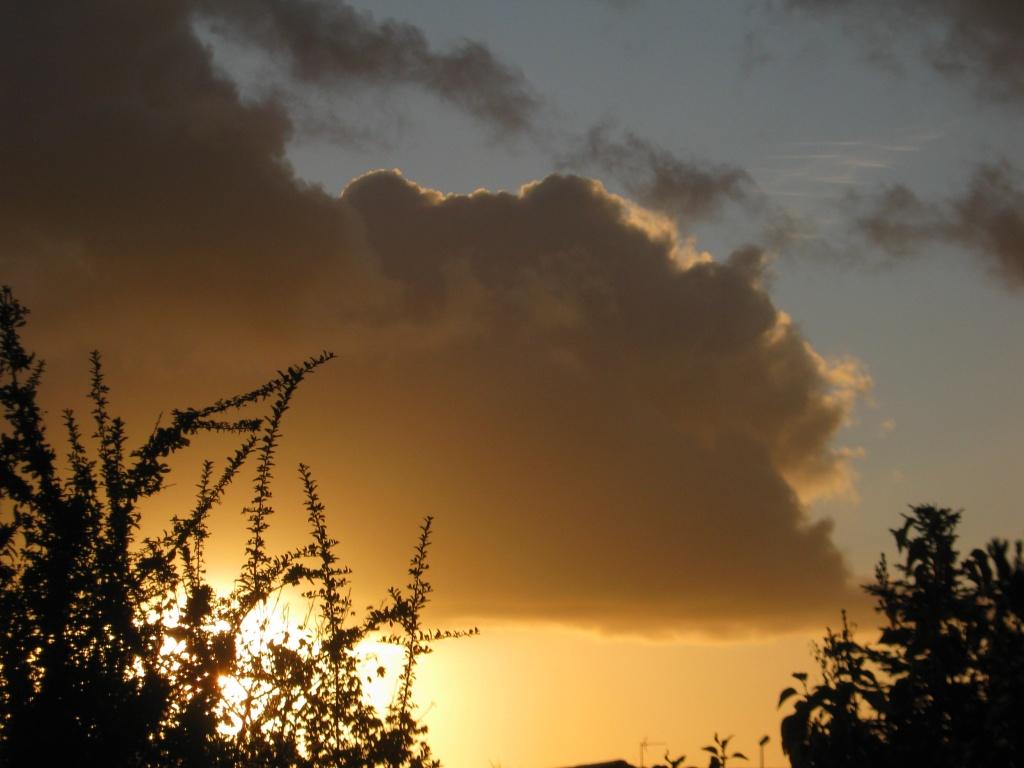 Couchers/levés du soleil et de la lune - Page 2 Photo_61