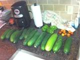 Coastal & Tropical South: June Garden Updates! Harves10