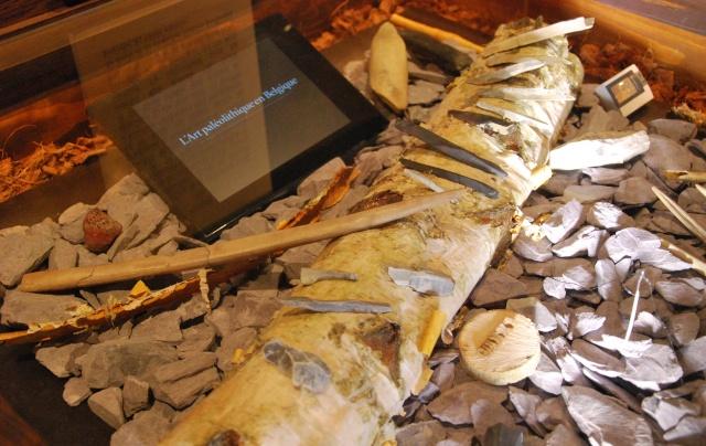 le musée de la grotte Scladina Dsc_1126