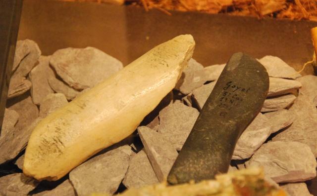 le musée de la grotte Scladina Dsc_1129
