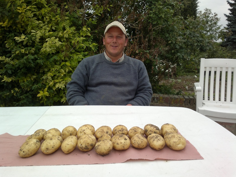 évolution des cultures de pommes de terre 2011. - Page 5 10072010